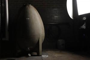 festus-reyneke-12